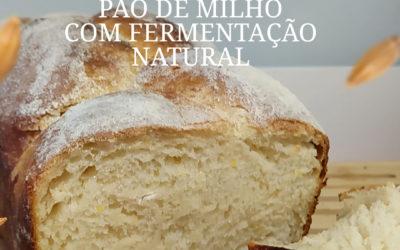 Pão de Milho Fermentação Nutural